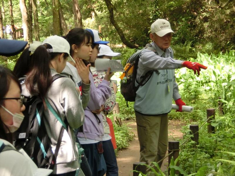 《中学2年》環境学習 矢部和弘先生による講演・小網代の森研修を行いました